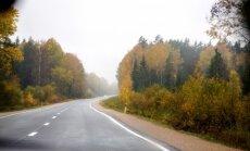 Синоптики: в среду ожидается дождь и порывистый ветер