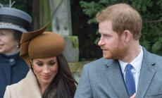 ФОТО: Шляпка невесты принца Гарри стала предметом насмешек в Сети