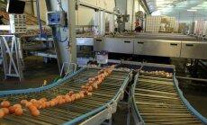 PVD: Putnu blīvums 'Balticovo' novietnēs atbilst labturības prasībām