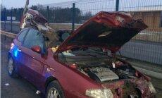 Foto: Uz Jelgavas šosejas 'Alfa Romeo' sadūrusies ar alni