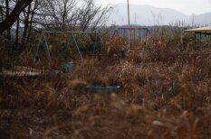 Чем Фукусима живет пять лет спустя? Выжившие все еще ищут тела и души близких