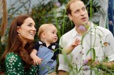 Маленький принц: первый годик жизни принца Джорджа (в фотографиях)
