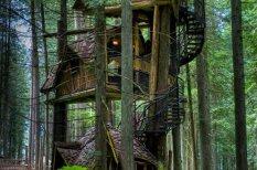 TOP 5 elpu aizraujošākie koka namiņi pasaulē