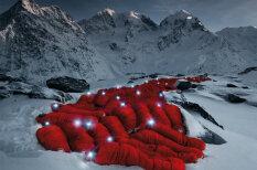Феноменальные кадры: десятки альпинистов в Альпах позируют известному фотографу