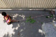 """История о малышке, днями сидящей """"на поводке"""" на 40 °C жаре, разобьет твое сердце :("""