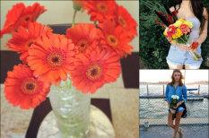 Вам, девушки: 19 очень важных поводов взять и купить себе цветы