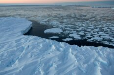 Attēli, kuros ieraudzīt polārlāci ir praktiski neiespējami