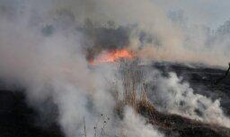 Возле Елгавского аэродрома горит свалка покрышек