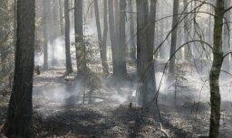 Piektdien dzēsti desmit meža ugunsgrēki