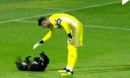 Video: Gruzijā futbola spēles laikā laukumā izskrien rotaļīgs suns