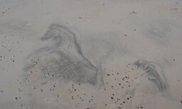 Neticams dabas veidojums piekrastes smiltīs