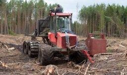 Dagnis Dubrovskis: Meža nozares regulējumam pārmaiņas nāks par labu