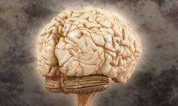 Noslēdzies konkurss par spēli 'Smadzenes'!