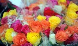 Из Латвии в Россию не пропустили 53 000 эквадорских роз