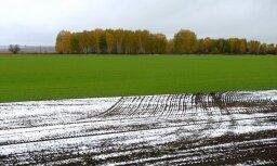 LOSP nākamgad ES centīsies panākt labākus nosacījumus Latvijas zemniekiem