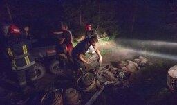 В Талсинском крае выгорело 400 гектаров торфяника и леса; пожар не локализован