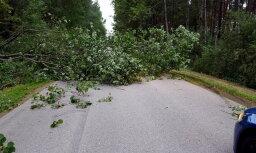 Plūdi un nogāzti koki: Aculiecinieki ziņo par vētras postījumiem Latvijā
