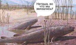 twitter.com/RussianMemesLtd
