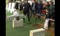 Video: pusaudzis ar galvu 35 sekundēs sasit 111 betona plāksnes