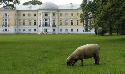 Газета: дворец в Межотне сдан в аренду малоизвестной фирме