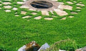 Lai top pasakaina svētku vieta – dārznieka Jāņa pieredzes stāsts par ugunskura vietas veidošanu