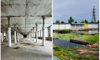 Pamestas rūpnīcas un vietējā Venēcija – ko redzēt Igaunijas robežpilsētā Narvā