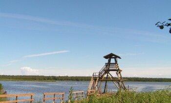 10 dabas takas pie brīnišķīgiem Latvijas ezeriem, kur noķert vasaru aiz astes
