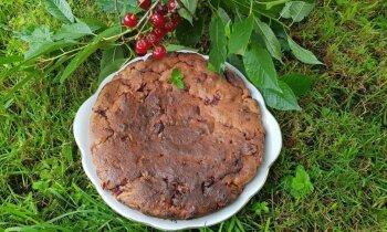 Vasarīga biezpiena kūka ar ķiršiem un riekstiem