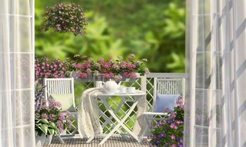 Četras viegli kopjamas puķes balkona dārziņam
