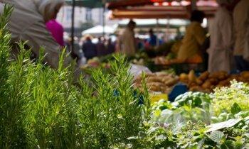 Pieci veselīgi atradumi Āgenskalna tirgū