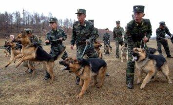'Traki suņi ir jānosit' jeb ko vēsta Ziemeļkorejas propagandas skrejlapas