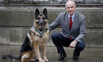 Lielbritānijā apbalvots Otrā pasaules kara varonis – suns Čips