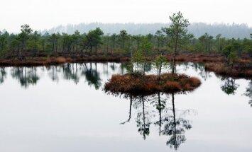 Iespējams, vientuļākā un neskartākā cilvēku apdzīvotā sala Latvijā – Siksola
