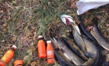 Dabas liegumā 'Sedas purvs' aiztur četrus maluzvejniekus