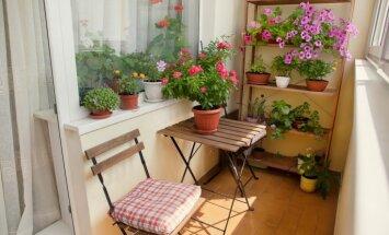 Daudzdzīvokļu namu balkona vai lodžijas iestiklošana Rīgā – noteikumi un prasības