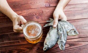 Ученые предсказали подорожание пива из-за глобального потепления