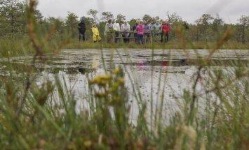 Ielūkoties akacī: Sildu purva takas neskartais miers