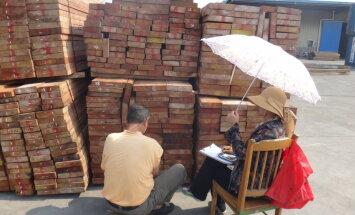 Ķīnieši gatavi pirkt visu, ko Latvijas kokrūpnieki var saražot