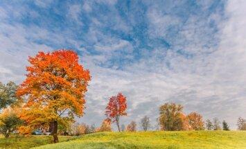 Takas, torņi un krāsainas dabas ainavas: kur noķert rudeni aiz astes