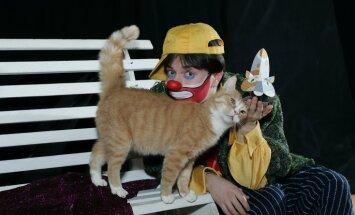 Чем заняться в выходные: кошки Куклачева, охотники за микробами и роскошь свободы
