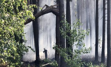 Foto: Lokalizēts meža ugunsgrēks Garupē