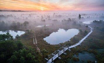Vāc parakstus par aizliegumu atmežot Ķemeru nacionālo parku