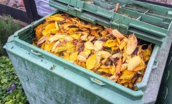 Gatavojamies ziemai: kas jāzina par komposta saglabāšanu aukstākos laika apstākļos