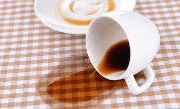 Качество кофе может резко ухудшиться из-за изменения климата