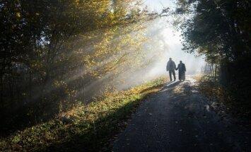 Ночью местами сгустится туман, в субботу днем воздух прогреется до +29 градусов