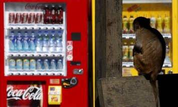Austrālijā mazs puisēns sešas stundas iesprūst uzkodu automātā