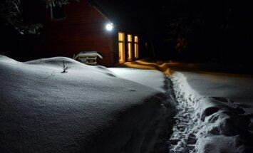 Ziemas saulgrieži – attīrīšanās un apzināšanās laiks