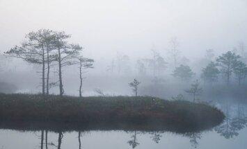Sagaidot rītausmu Ķemeru purvā – miglā ieskautā tīreļa burvība fotogrāfijās