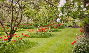 Kā iekārtot dārzu atbilstoši fen šui mācībai?