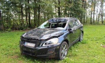 Foto: Biežākās sadursmes ar auto izraisa stirnas
